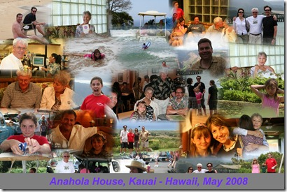 2008-hawaii-auto-collage4-highres