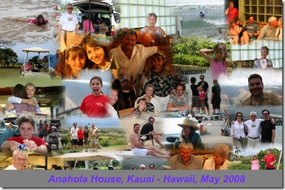 2008-hawaii-auto-collage5-highres